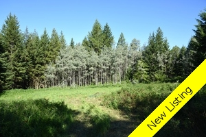 Williams Lake Land for sale:  Studio  (Listed 2017-07-04)